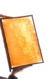Panal Foto de archivo