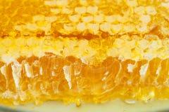 Panal amarillo quebrado con la miel en la placa Imagen de archivo libre de regalías