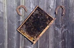 Panal con dos herraduras oxidadas viejas Imagenes de archivo