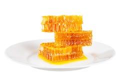 Panal con la miel Imagen de archivo