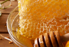Panal con la miel y más profundo en macro del bol de vidrio Imágenes de archivo libres de regalías