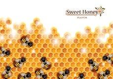 Panal con las abejas de trabajo Imagen de archivo libre de regalías