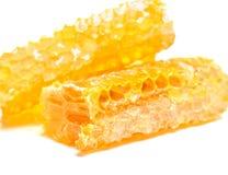 Panal de la abeja con la miel Fotografía de archivo libre de regalías