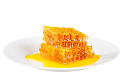 Panal de la abeja con la miel Fotografía de archivo