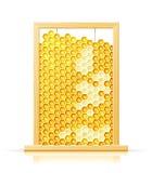 Panal de la abeja en marco Imagenes de archivo