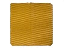 Panal de las células del encargado de la abeja Imagen de archivo libre de regalías