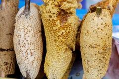 Panal de oro con la miel Foto de archivo