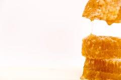 Panal dulce, aislado en el fondo blanco, goteo de la miel Imagen de archivo libre de regalías