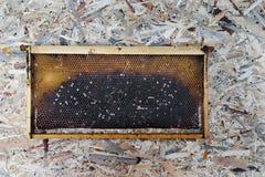 Panal dulce orgánico en fondo de madera de la textura Foto de archivo