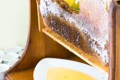Panal en marco de madera con la miel del goteo imagenes de archivo