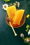 Panal fresco delicioso con los wildflowers Fotografía de archivo