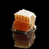 Panal orgánico con la miel aislada en fondo negro Imagenes de archivo