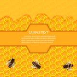 Panal y goteos dulces de la miel Imágenes de archivo libres de regalías