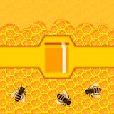 Panal y goteos dulces de la miel Fotografía de archivo libre de regalías