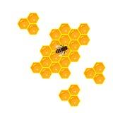 Panal y goteos dulces de la miel Foto de archivo libre de regalías