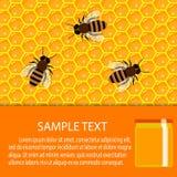 Panal y goteos dulces de la miel productos y apicultura del colmenar Fotos de archivo