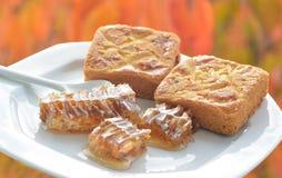 Panal y halva dulces Imagen de archivo libre de regalías