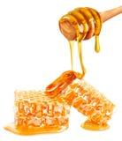 Panal y miel Foto de archivo libre de regalías