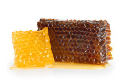 Panales con la miel, aislada en blanco Imágenes de archivo libres de regalías