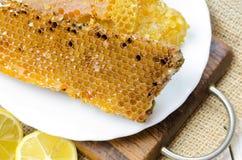 Panales de la abeja con la miel Foto de archivo libre de regalías