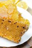Panales de la abeja con la miel Imágenes de archivo libres de regalías