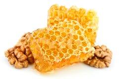 Panales de la miel con una nuez Foto de archivo