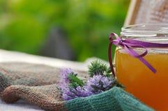 Panales de la miel y flor de un Phacelia en un platillo Fotos de archivo