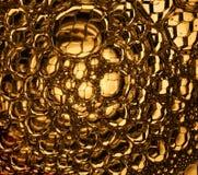 Panales de oro macros fotografía de archivo
