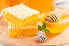 Panales frescos Miel de la flor en un cuenco Imagen de archivo libre de regalías
