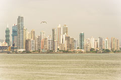 Panama City Royalty Free Stock Photos