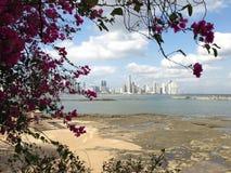 Panama city skyline 2013 Royalty Free Stock Photos