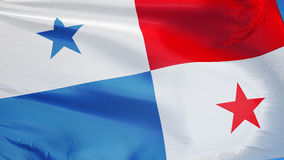 Panama flag in slow motion seamlessly looped with alpha vector illustration