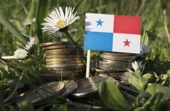 Panama flagga med bunten av pengarmynt med gräs Arkivfoton