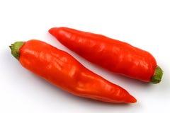 Panama gorąca czerwone chile zdjęcia stock