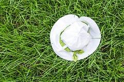 Panama on green grass Royalty Free Stock Photography
