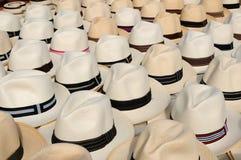 Panama-Hüte Lizenzfreie Stockfotos