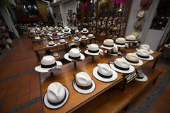 Panama hat museum Stock Photos