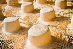 Free Panama Hats Royalty Free Stock Photo - 25125265