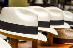 Panama hats. In Cuenca, Ecuador royalty free stock photography