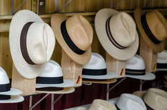 Panama hats. In Cuenca, Ecuador stock image
