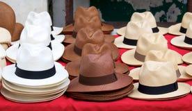 Panama hattar Arkivfoton