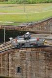 Panama-Kanal, Maultier Lizenzfreie Stockbilder