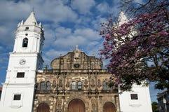 Panama-Kathedrale Stockfotografie