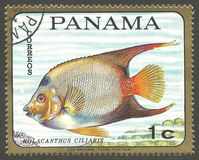 Fish, Queen Angelfish. Panama - stamp 1968, Memorable Multicolor Edition, Marine Fauna, Series Fish, Queen Angelfish, Holacanthus ciliaris Stock Image