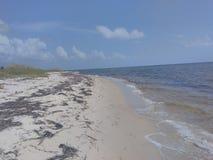 Panama strand Royaltyfria Foton