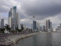 Panama-Wolkenkratzer Lizenzfreies Stockfoto