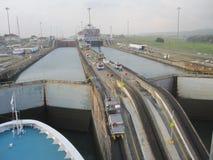 Panamakanal-Maultiere Stockbild