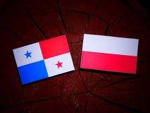 Panamanian flag with Polish flag on a tree stump isolated. Panamanian flag with Polish flag on a tree stump vector illustration