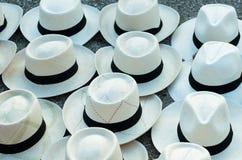 Panamas Hüte stockbilder