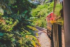 Panamskiego kanału linii kolejowej pociąg jedzie od Panamskiego miasta Colo zdjęcia royalty free